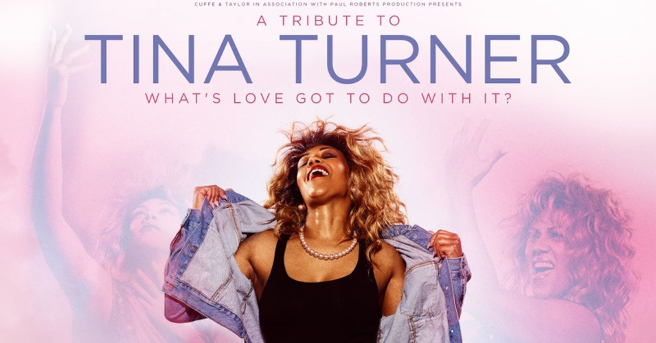 """Tribute to Tina Turner """"What`s Love Got To Do With It."""""""