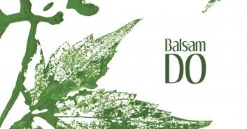 Balsam - warsztaty, koncert i potańcówka