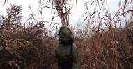 Otwarcie wystawy Plant Blindness Syndrome - Krystyna Jędrzejewska-Szmek